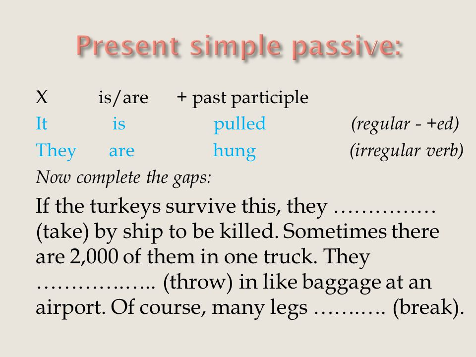 X is/are + past participle It is pulled (regular - +ed) They are hung (irregular verb) Now complete the gaps: If the turkeys survive this, they …………… (take) by ship to be killed.