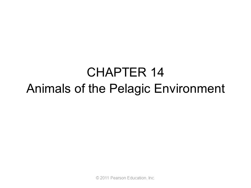 © 2011 Pearson Education, Inc. CHAPTER 14 Animals of the Pelagic Environment
