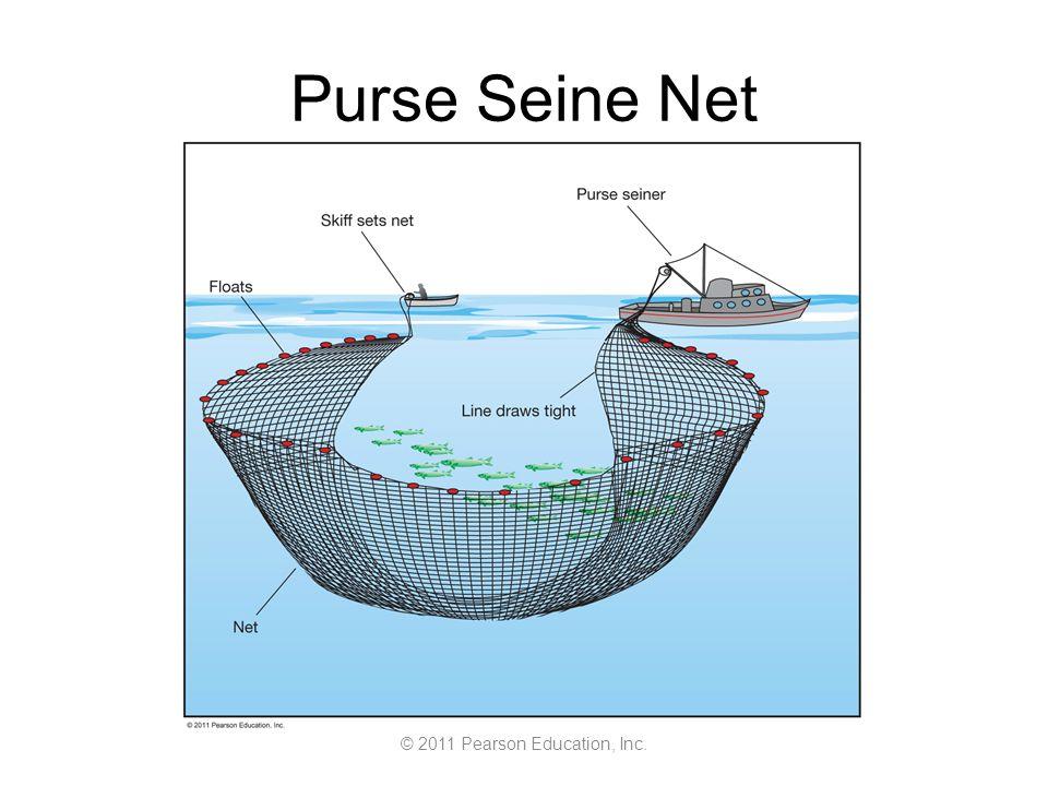 © 2011 Pearson Education, Inc. Purse Seine Net