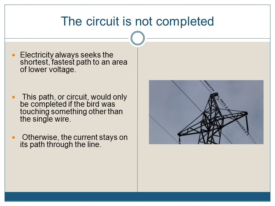 The circuit is not completed Electricity always seeks the shortest, fastest path to an area of lower voltage.
