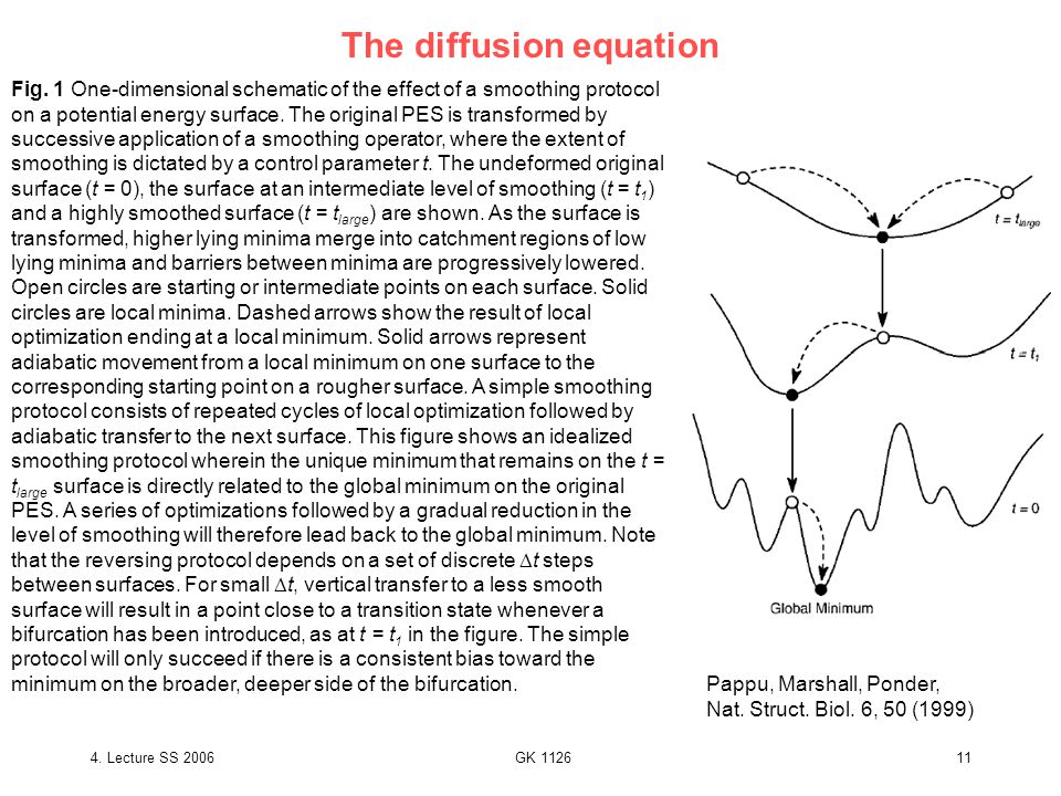 4. Lecture SS 2006GK 112611 The diffusion equation Pappu, Marshall, Ponder, Nat.