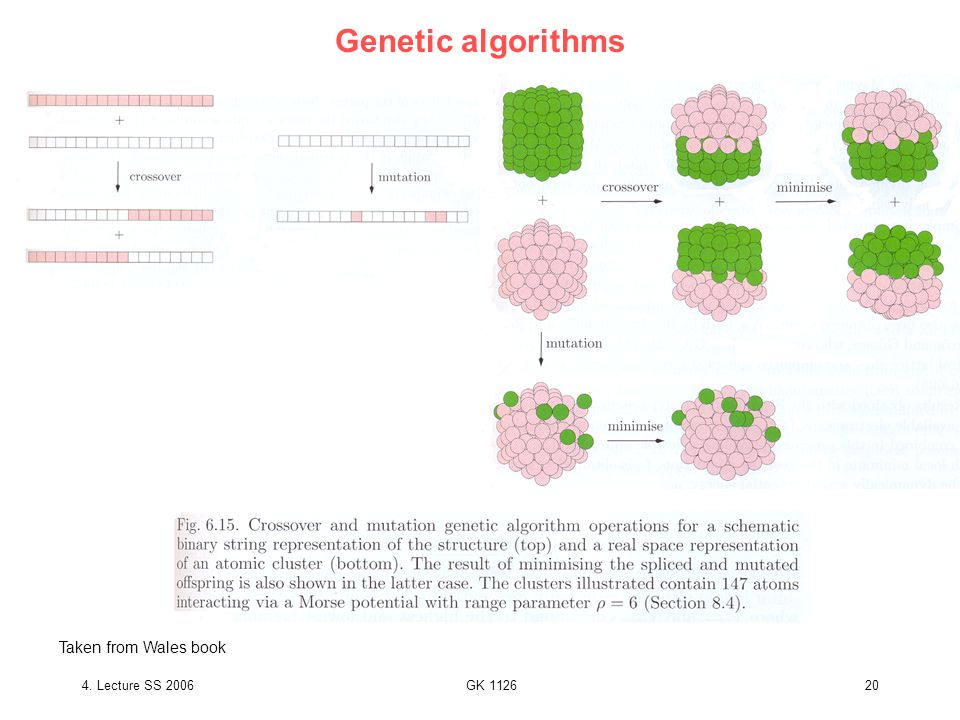 4. Lecture SS 2006GK 112620 Genetic algorithms Taken from Wales book