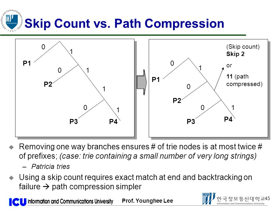 Prof. Younghee Lee 45 Skip Count vs.