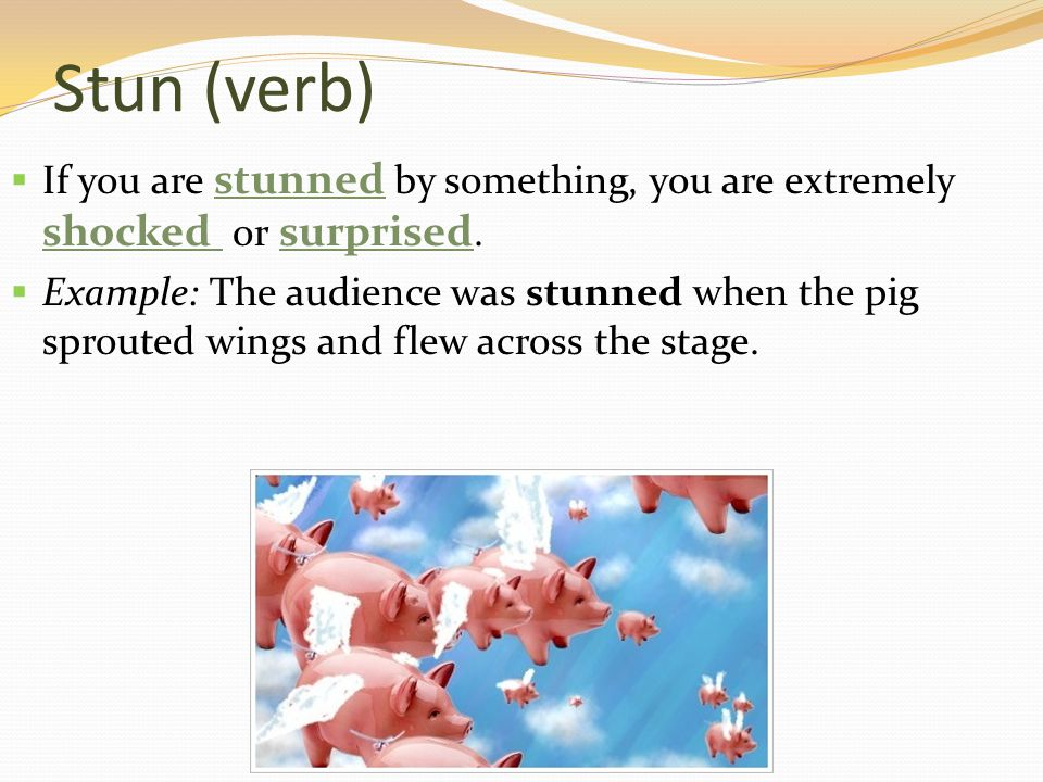 Stun (verb)  If you are stunned by something, you are extremely shocked or surprised.