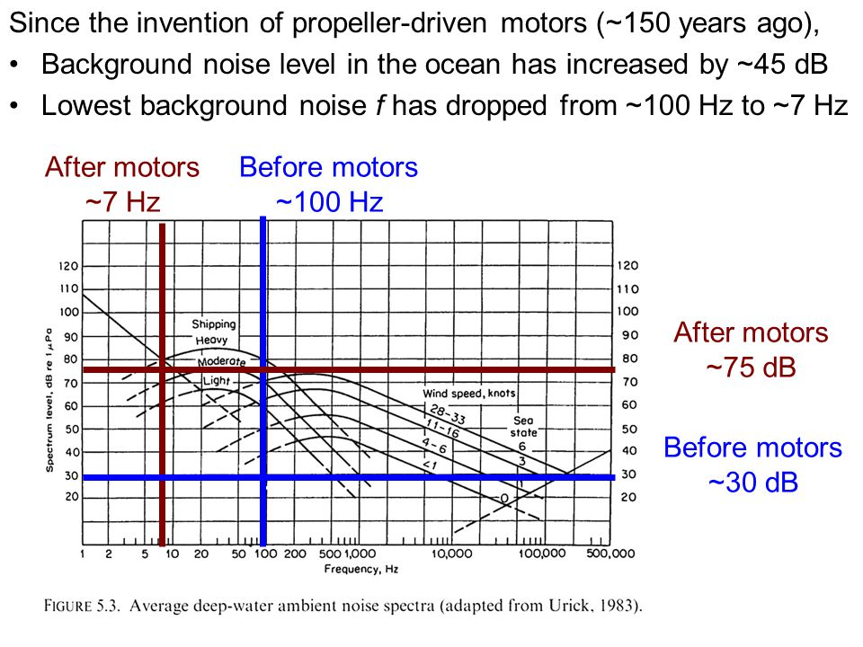 Before motors ~30 dB After motors ~75 dB Since the invention of propeller-driven motors (~150 years ago), Background noise level in the ocean has increased by ~45 dB Lowest background noise f has dropped from ~100 Hz to ~7 Hz Before motors ~100 Hz After motors ~7 Hz