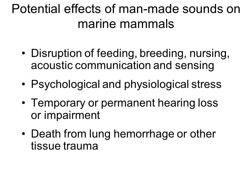Potential effects of man-made sounds on marine mammals Disruption of feeding, breeding, nursing, acoustic communication and sensing Psychological and physiological stress Temporary or permanent hearing loss or impairment Death from lung hemorrhage or other tissue trauma
