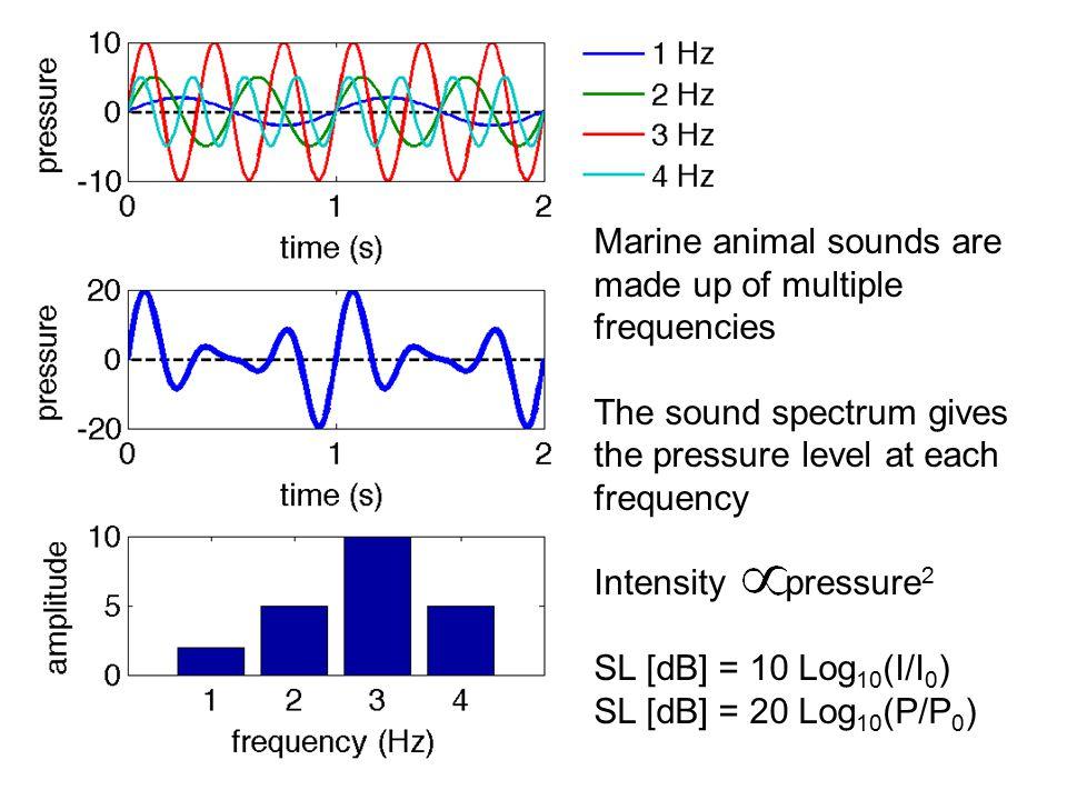Worcester & Spindel 2005 Spectrogram shows how sound spectrum changes over time