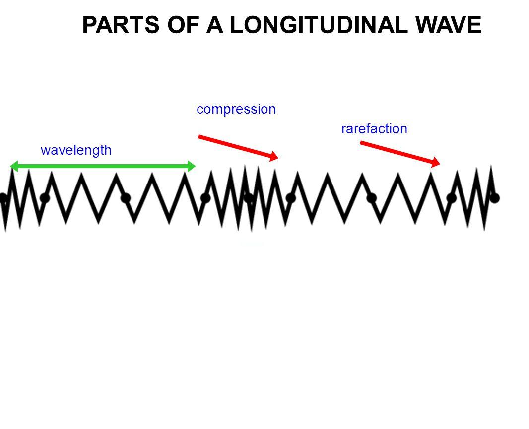 PARTS OF A LONGITUDINAL WAVE compression rarefaction wavelength