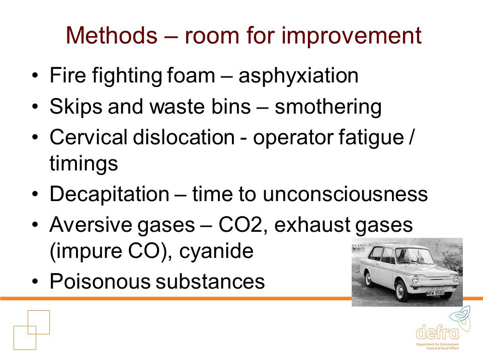 Methods – room for improvement Fire fighting foam – asphyxiation Skips and waste bins – smothering Cervical dislocation - operator fatigue / timings Decapitation – time to unconsciousness Aversive gases – CO2, exhaust gases (impure CO), cyanide Poisonous substances