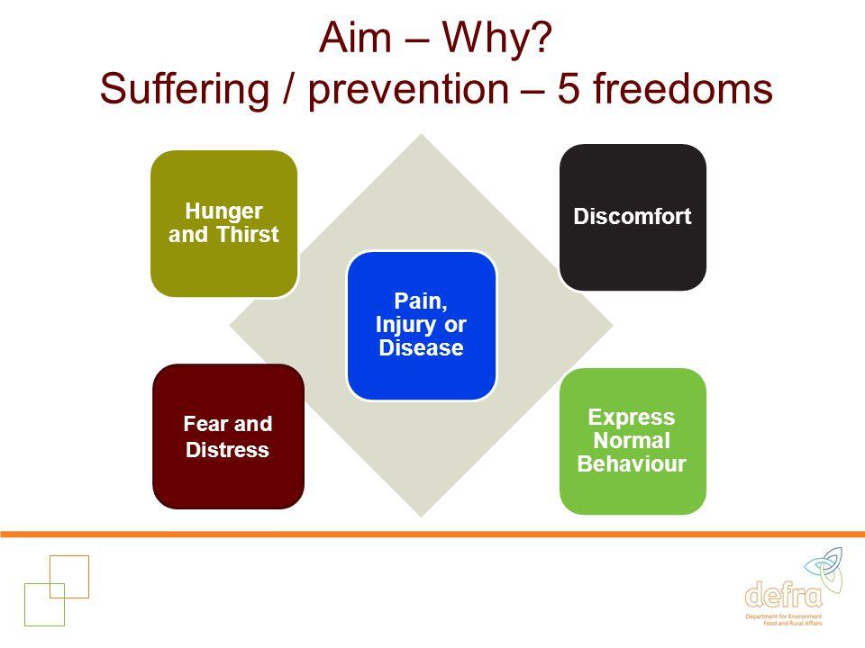 Aim – Why.