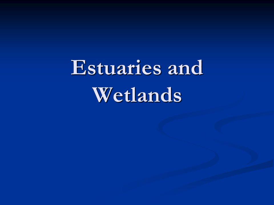 Estuaries and Wetlands