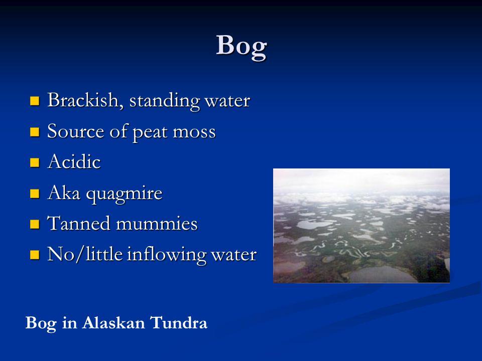Bog Brackish, standing water Brackish, standing water Source of peat moss Source of peat moss Acidic Acidic Aka quagmire Aka quagmire Tanned mummies Tanned mummies No/little inflowing water No/little inflowing water Bog in Alaskan Tundra