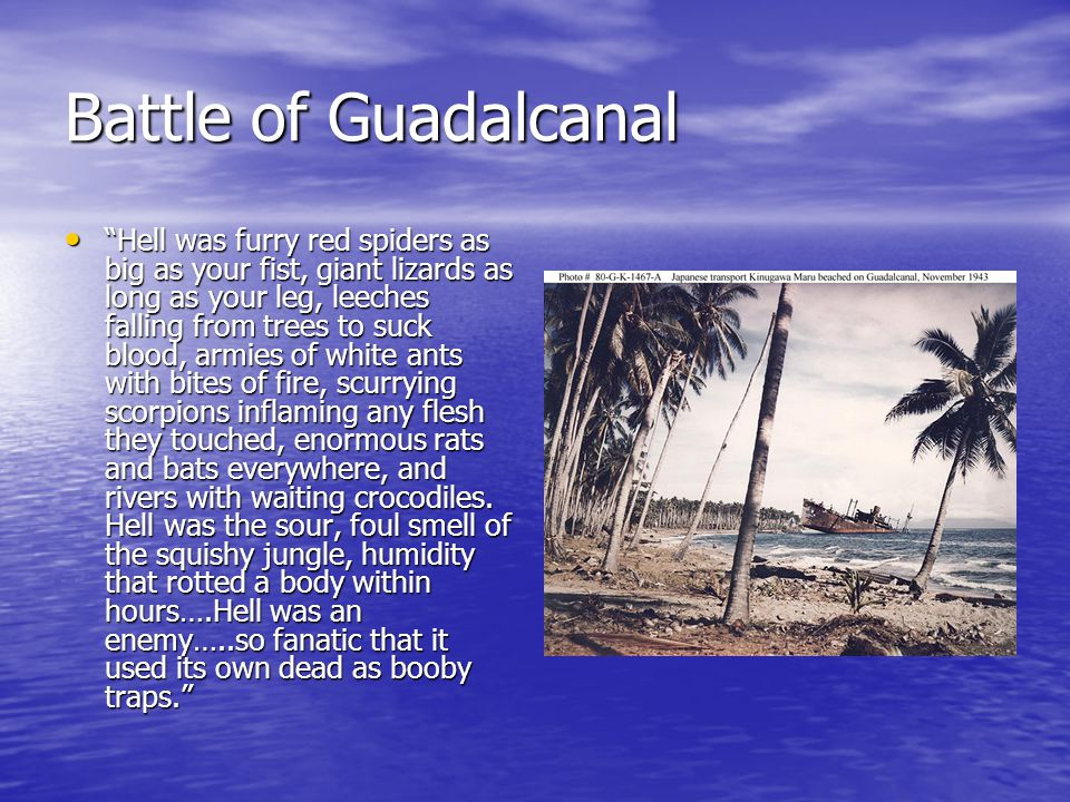 Battle of Guadalcanal Hell was furry red spiders as big as your fist, giant lizards as long as your leg, leeches falling from trees to suck blood, armies of white ants with bites of fire, scurrying scorpions inflaming any flesh they touched, enormous rats and bats everywhere, and rivers with waiting crocodiles.