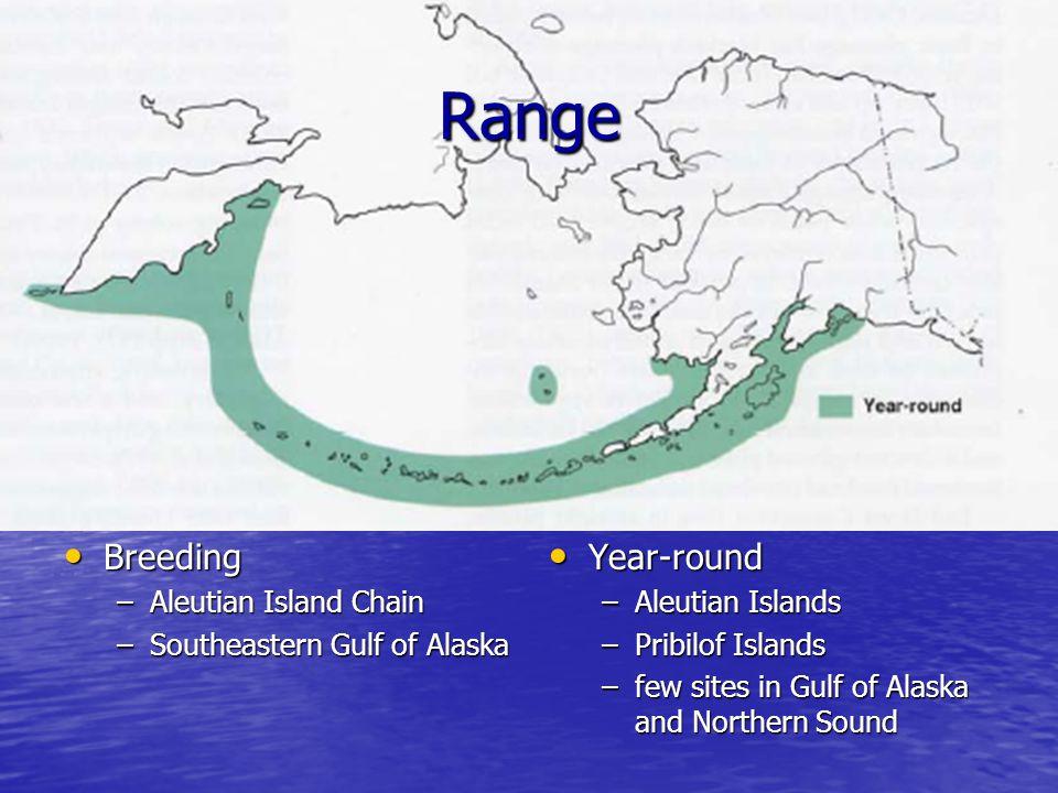 Range Breeding Breeding –Aleutian Island Chain –Southeastern Gulf of Alaska Year-round Year-round –Aleutian Islands –Pribilof Islands –few sites in Gulf of Alaska and Northern Sound