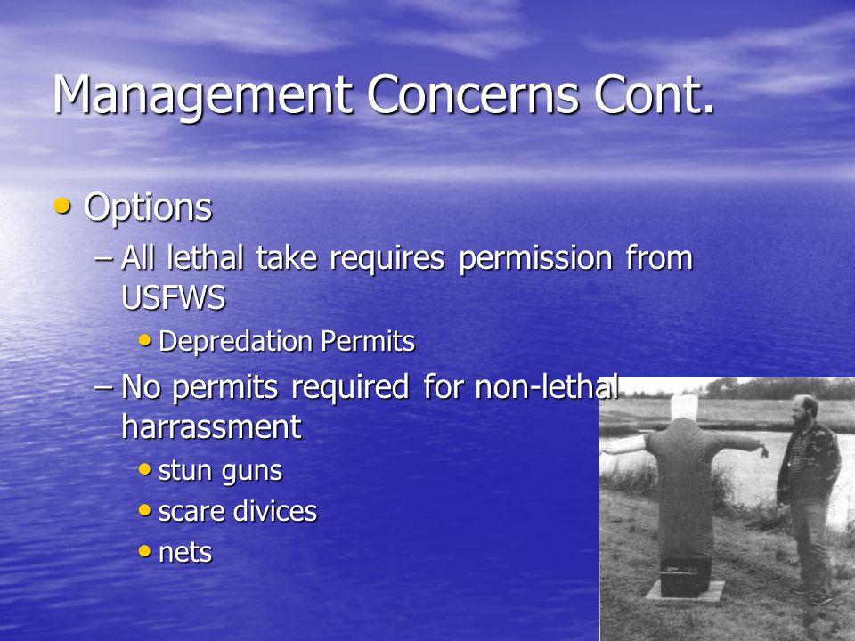 Management Concerns Cont.