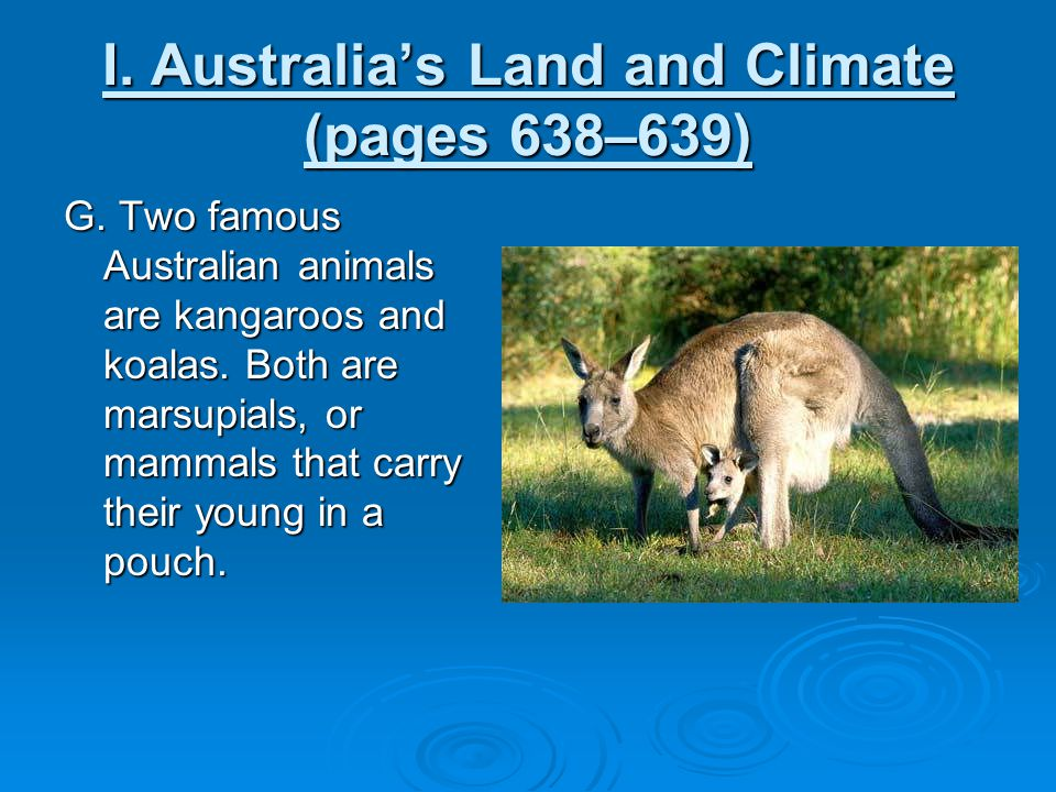 I. Australia's Land and Climate (pages 638–639) G. Two famous Australian animals are kangaroos and koalas. Both are marsupials, or mammals that carry