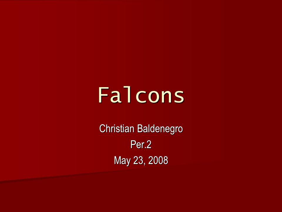 Falcons Christian Baldenegro Per.2 May 23, 2008