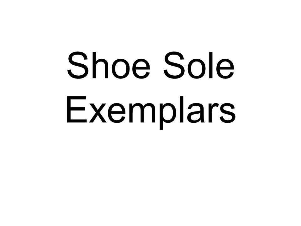 Shoe Sole Exemplars