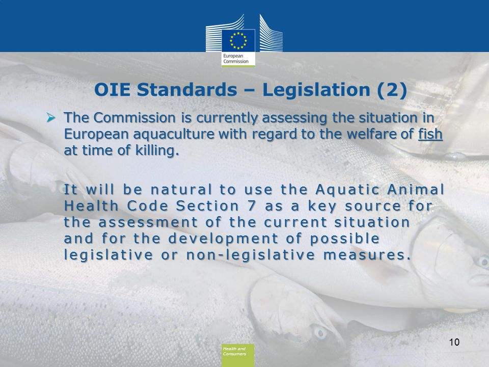 Health and Consumers Health and Consumers OIE Standards – Legislation (2)  The Commission is currently assessing the situation in European aquaculture with regard to the welfare of fish at time of killing.