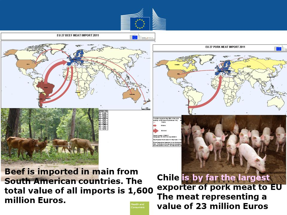 Health and Consumers Health and Consumers Beef is imported in main from South American countries.