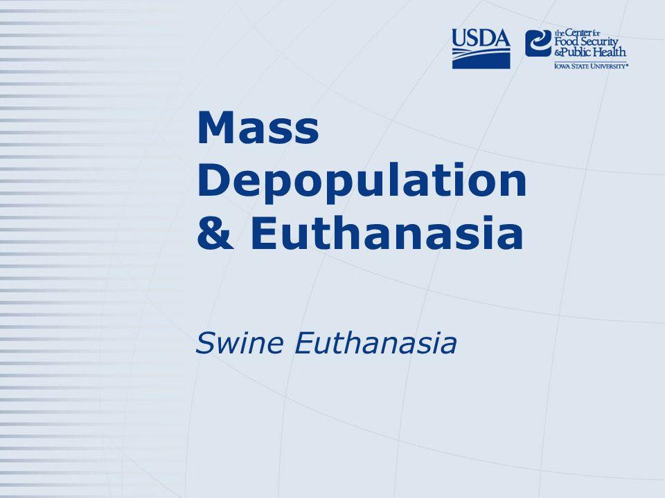 Mass Depopulation & Euthanasia Swine Euthanasia