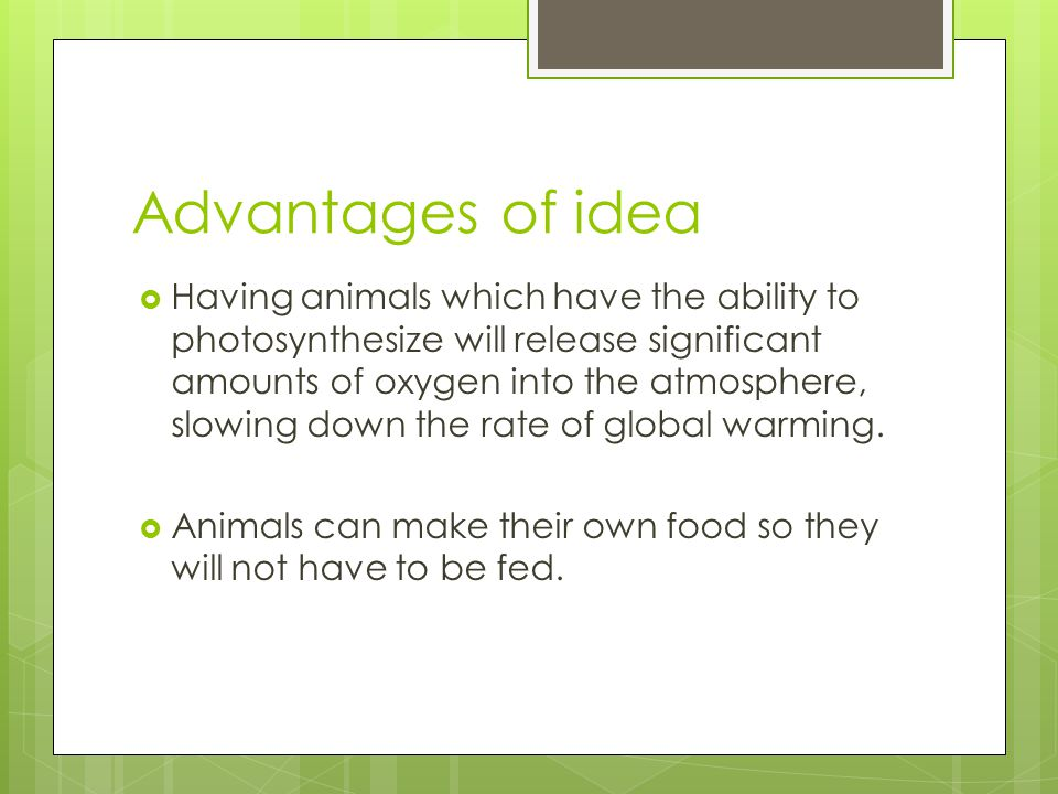 Advantages of idea  Having animals which have the ability to photosynthesize will release significant amounts of oxygen into the atmosphere, slowing down the rate of global warming.