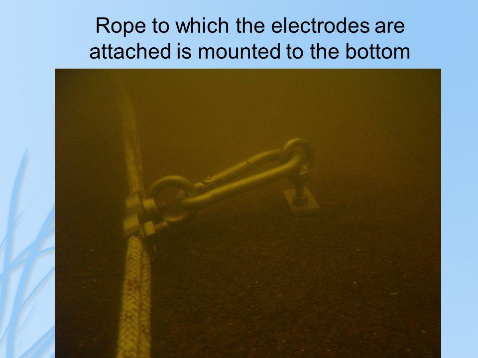 Pictorial diagram of electrode spacing