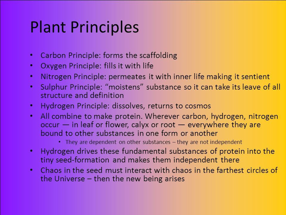 Plant Principles Carbon Principle: forms the scaffolding Oxygen Principle: fills it with life Nitrogen Principle: permeates it with inner life making