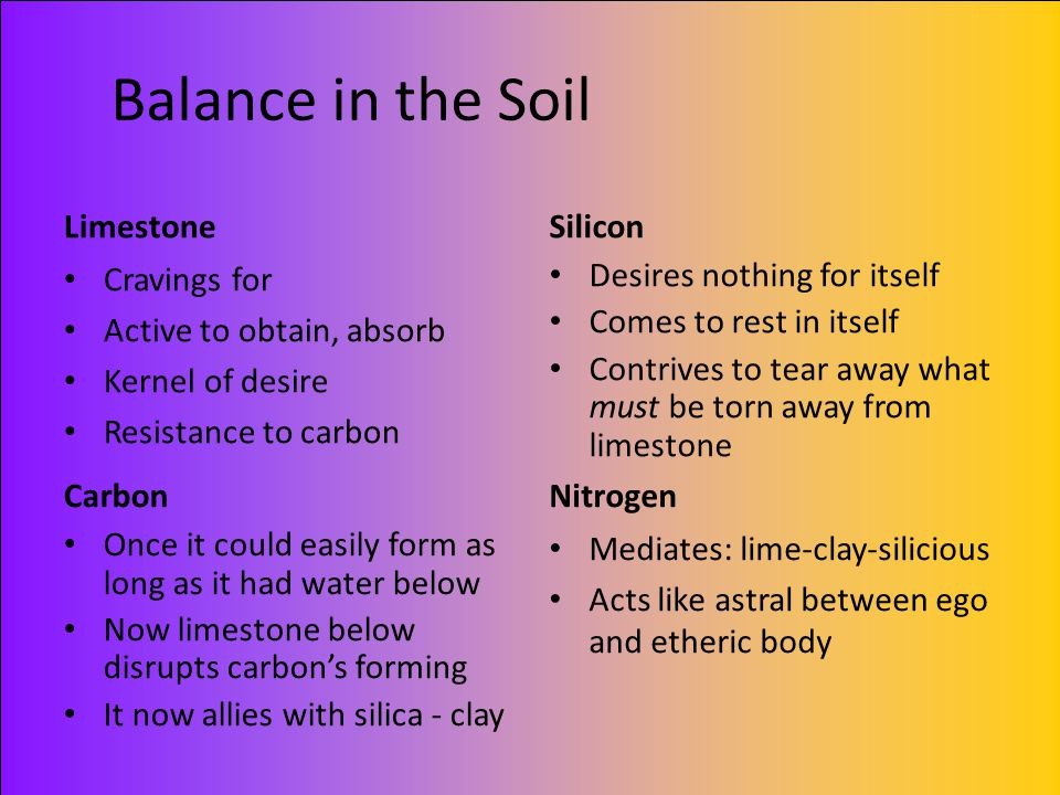 Balance in the Soil Limestone Cravings for Active to obtain, absorb Kernel of desire Resistance to carbon Silicon Desires nothing for itself Comes to