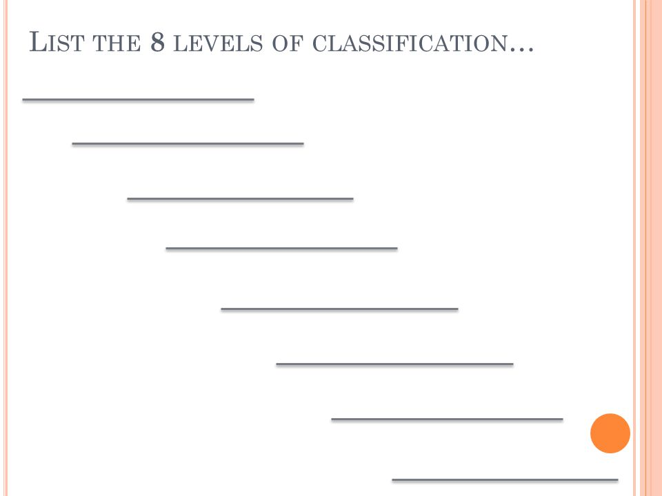 L IST THE 8 LEVELS OF CLASSIFICATION …