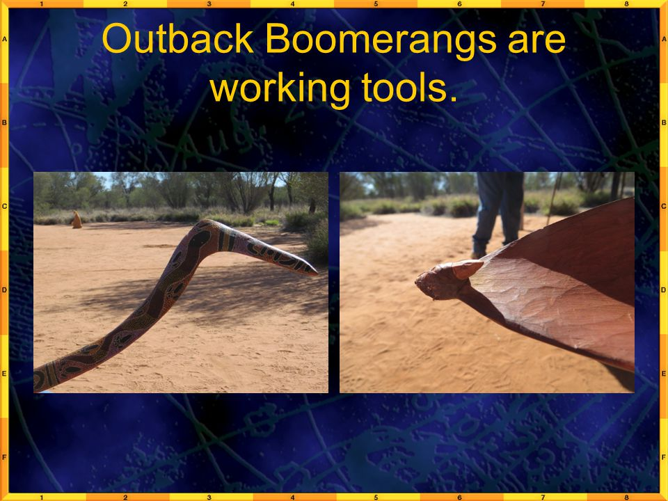 Outback Boomerangs are working tools.