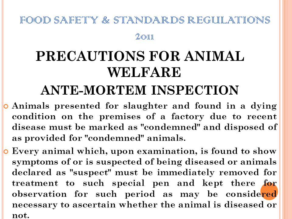 FOOD SAFETY & STANDARDS REGULATIONS 2011 PRECAUTIONS FOR ANIMAL WELFARE ANTE-MORTEM INSPECTION Animals presented for slaughter and found in a dying co