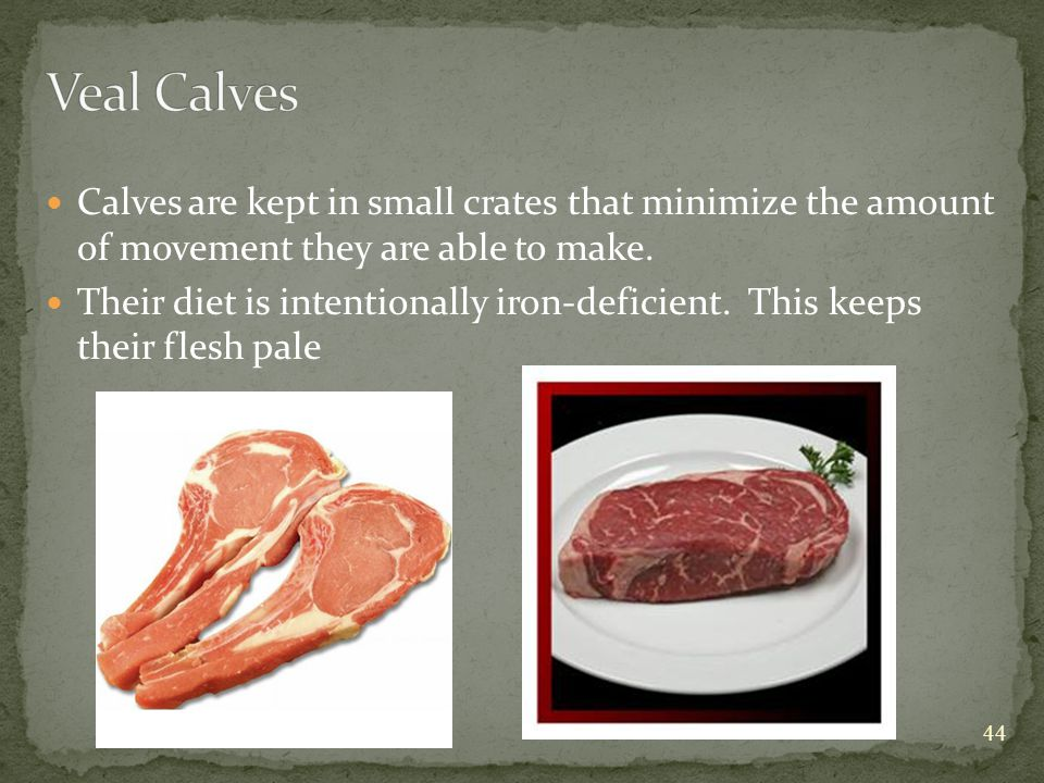 Calves are kept in small crates that minimize the amount of movement they are able to make.