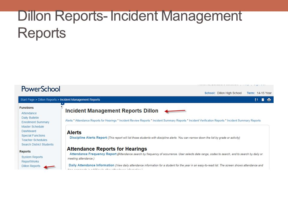 Dillon Reports- Incident Management Reports
