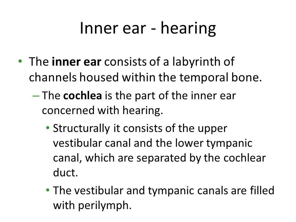 Inner ear - hearing The inner ear consists of a labyrinth of channels housed within the temporal bone.