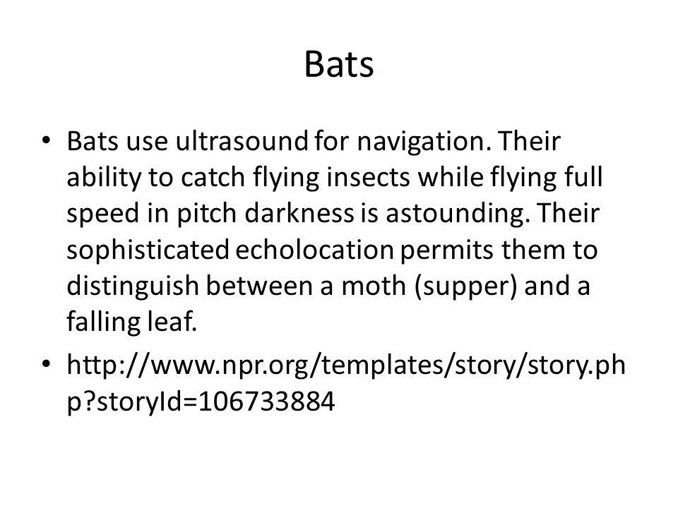 Bats Bats use ultrasound for navigation.