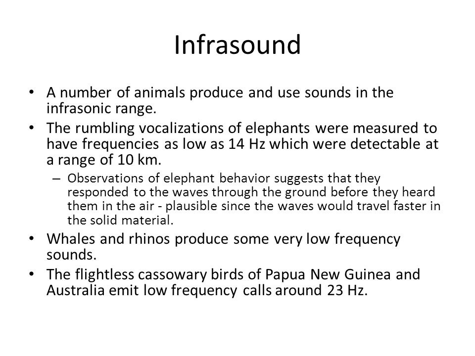 Infrasound A number of animals produce and use sounds in the infrasonic range.