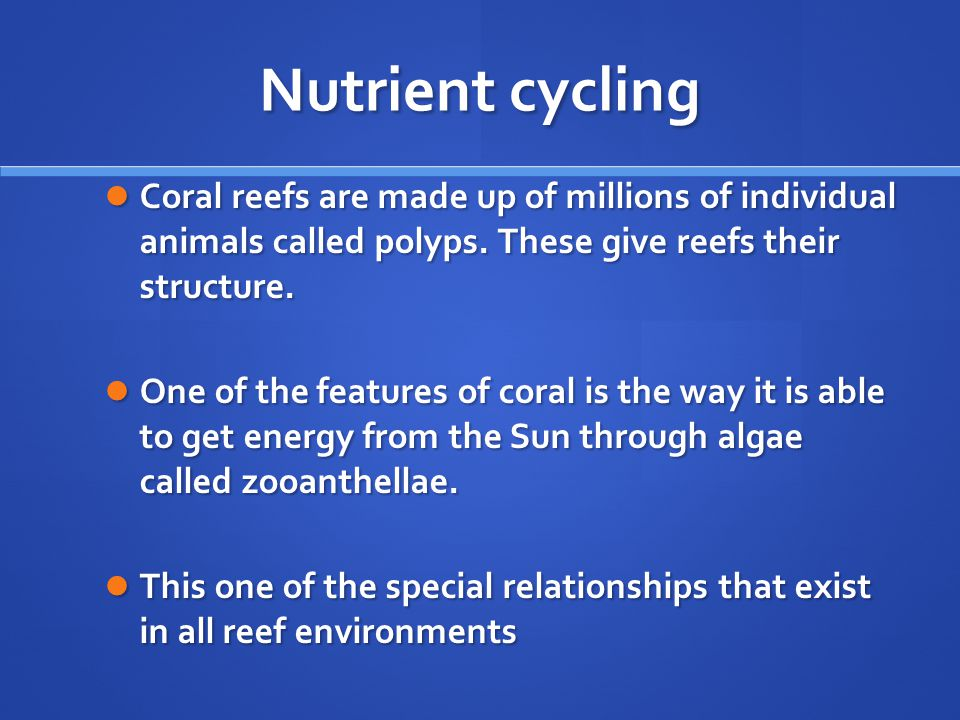 Nutrient cycling Coral reefs are made up of millions of individual animals called polyps.