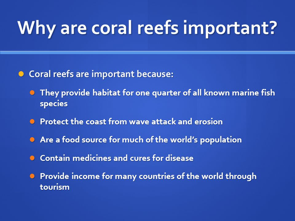 Why are coral reefs important.