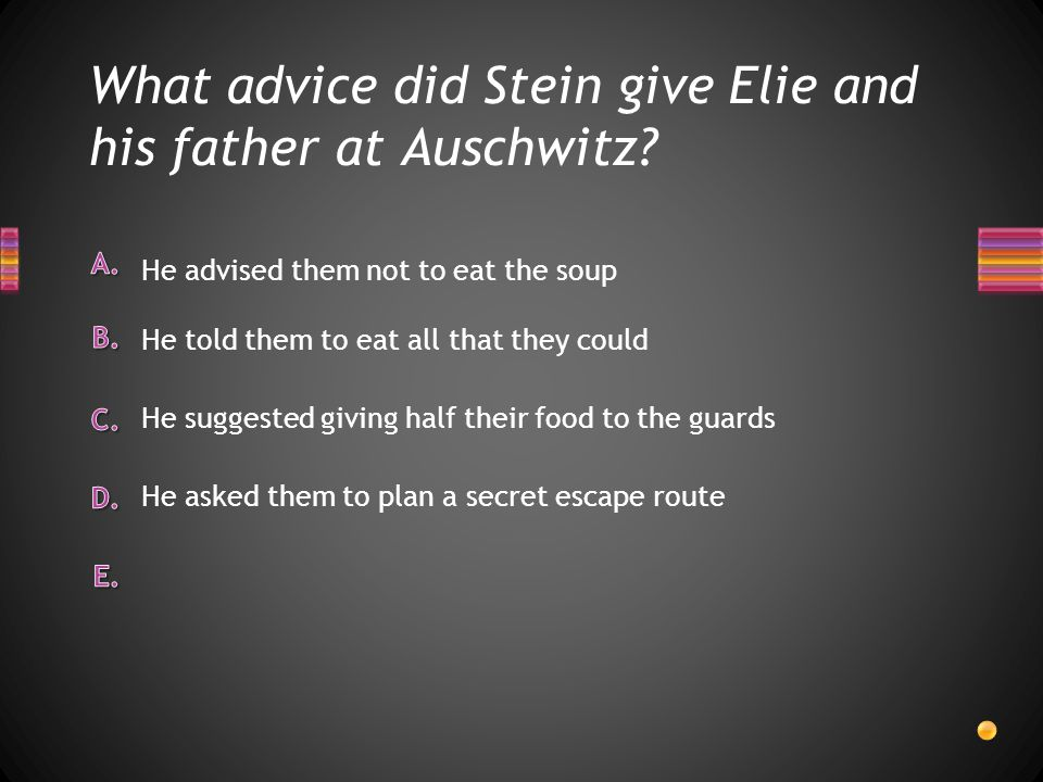 What advice did Stein give Elie and his father at Auschwitz? He asked them to plan a secret escape route He suggested giving half their food to the gu