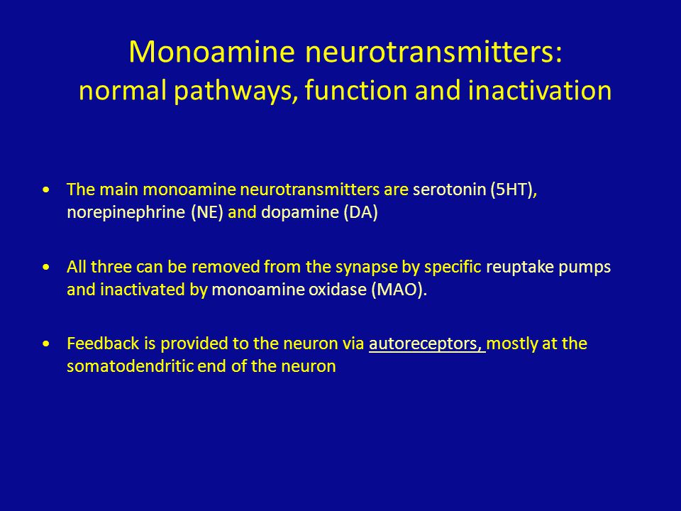 Monoamine neurotransmitters: normal pathways, function and inactivation The main monoamine neurotransmitters are serotonin (5HT), norepinephrine (NE)