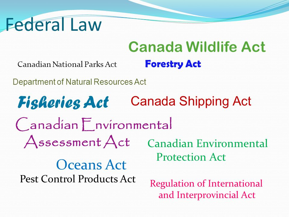 Federal Law Canadian National Parks Act Canada Wildlife Act Canadian Environmental Protection Act Canada Shipping Act Canadian Environmental Assessment Act Department of Natural Resources Act Fisheries Act Forestry Act Oceans Act Pest Control Products Act Regulation of International and Interprovincial Act