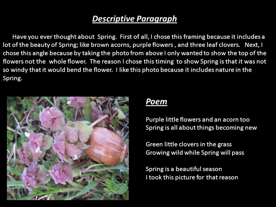 Descriptive Paragraph Have you ever thought about Spring. First of all, I chose this framing because it includes a lot of the beauty of Spring; like b