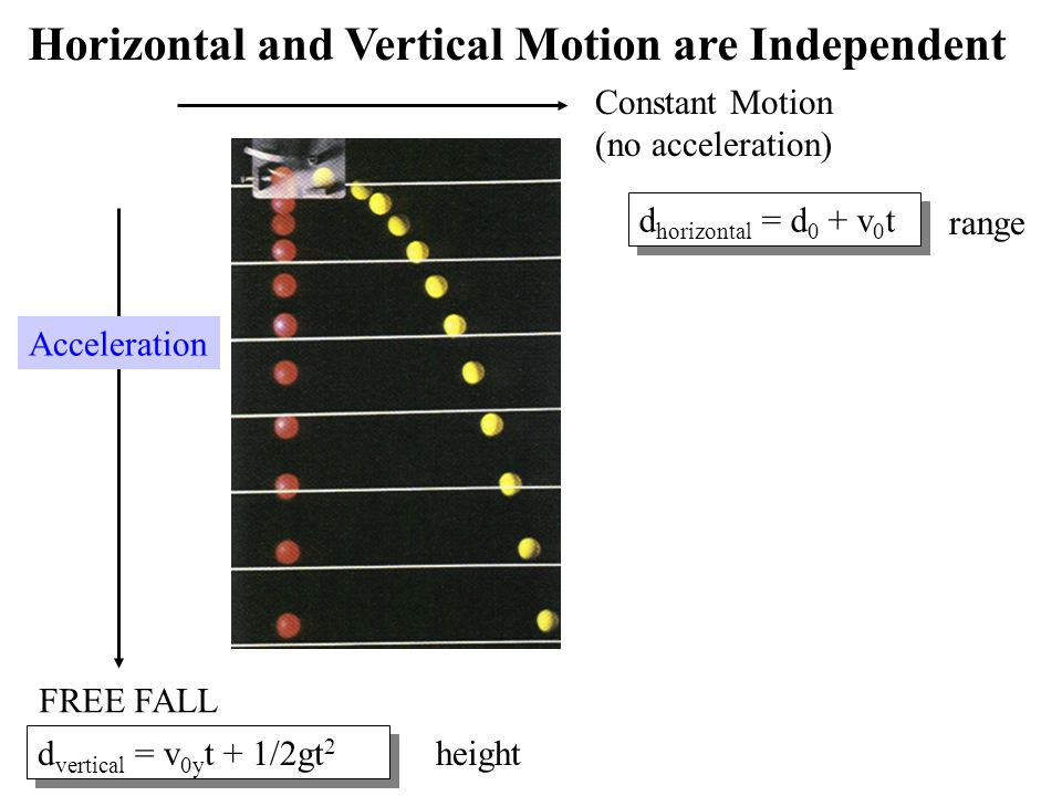 FREE FALL Acceleration Constant Motion (no acceleration) d horizontal = d 0 + v 0 t range d vertical = v 0y t + 1/2gt 2 height Horizontal and Vertical Motion are Independent