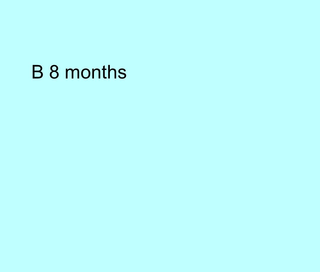B 8 months