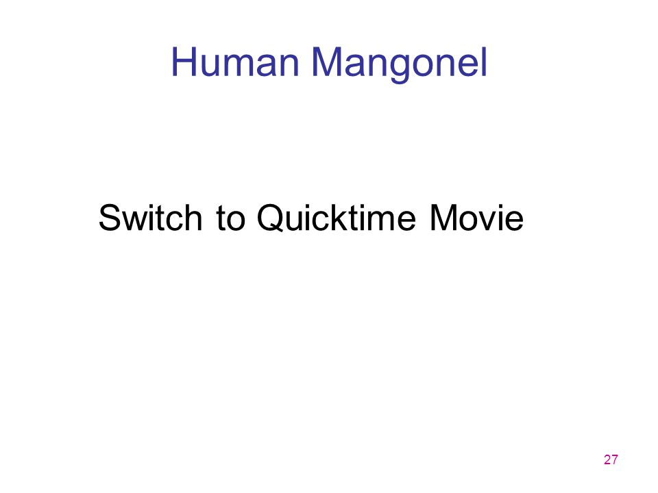 27 Human Mangonel Switch to Quicktime Movie
