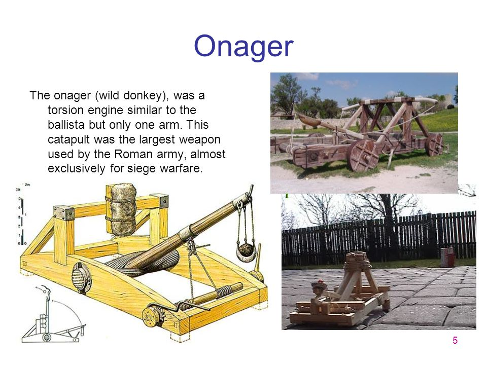 5 Onager The onager (wild donkey), was a torsion engine similar to the ballista but only one arm. This catapult was the largest weapon used by the Rom