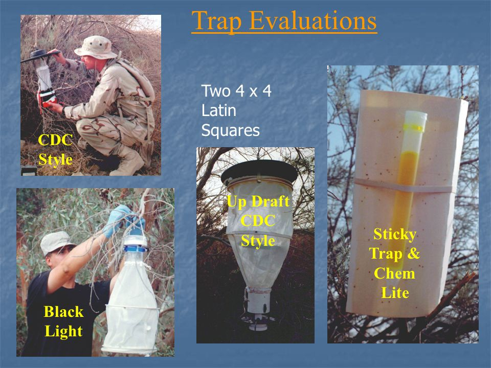 Trap Evaluations Black Light CDC Style Up Draft CDC Style Sticky Trap & Chem Lite Two 4 x 4 Latin Squares