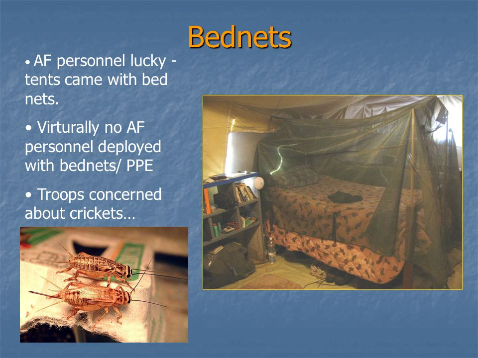 Percentage of Personnel Using Bednets in AF Tent City (1 st AEF), Tallil AB – June 03 0 20 40 60 80 100 % Males Bednets - Cots % Males Bednets - Beds % Females w/ Bednets Cots % Females w/ Bednets - Beds Fliers - A-10SF Personnel % Personnel Everyone Else – AF Tent City n = 198 n = 61 n = 35 n = 70 * Didn't have Commander or NCO support!