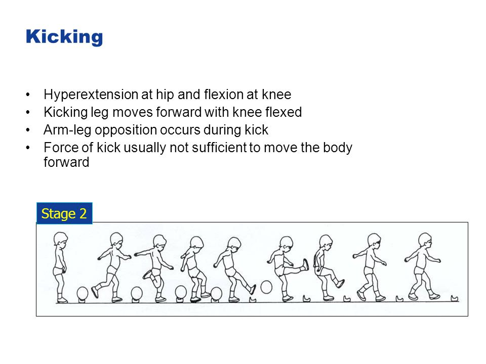 Kicking Hyperextension at hip and flexion at knee Kicking leg moves forward with knee flexed Arm-leg opposition occurs during kick Force of kick usual